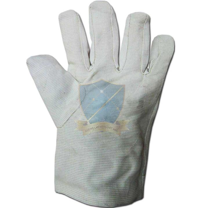 Găng vải bạt dày cotton Lóng vuông, chéo GTV-VN-03